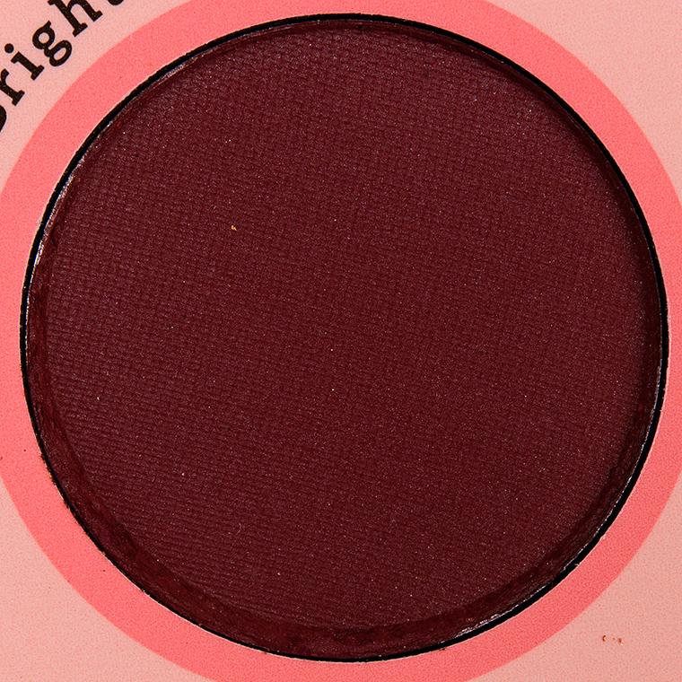 Color Pigment de poudre pressée Ms. Brightside