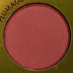 "Color Plumage Pop Pressed Shadow Powder ""data-pin-nopin ="" 1"